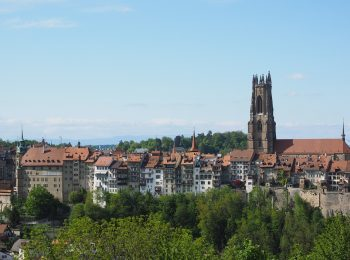 fribourg-4120767_960_720